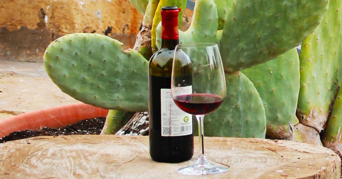 Puglia Taste & Culture: Viaggio nei Sapori